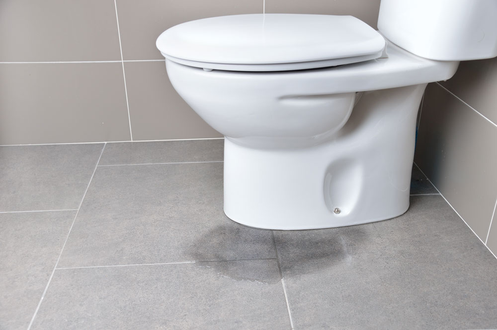 Toilet Pipes Clogged